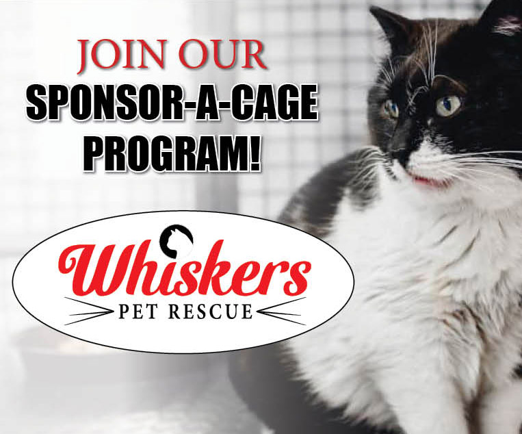 Sponsor a Cage
