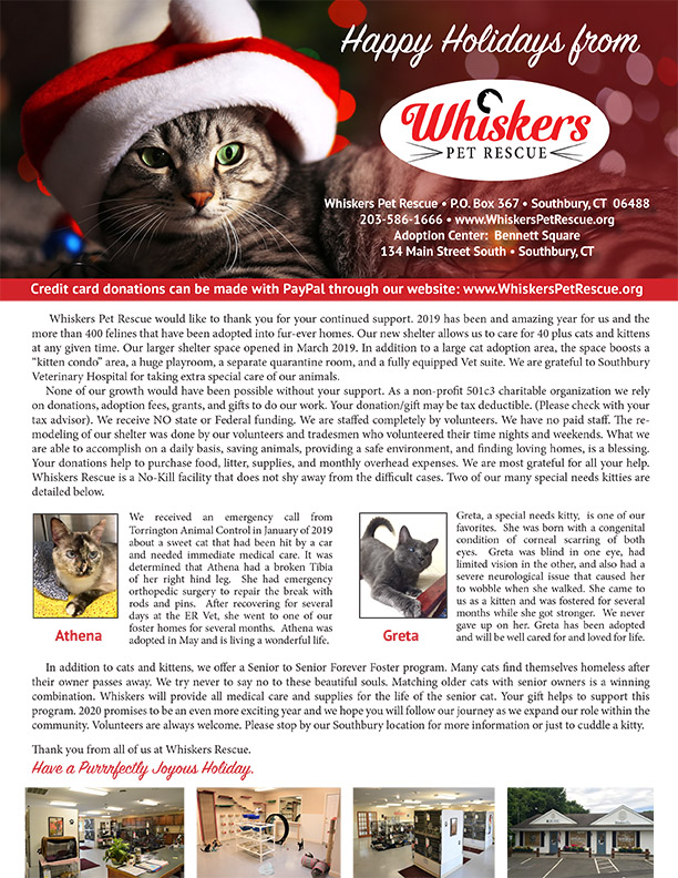 Whiskers Holiday Letter