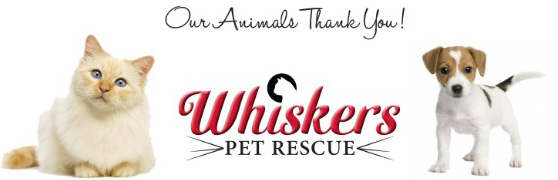 Our Animals Thank You